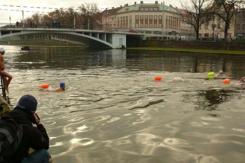 River Labe CZ Ice Swim 2015, foto: Jiří Kuřina